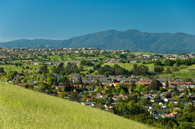 вечнозеленая долина весны стоковая фотография