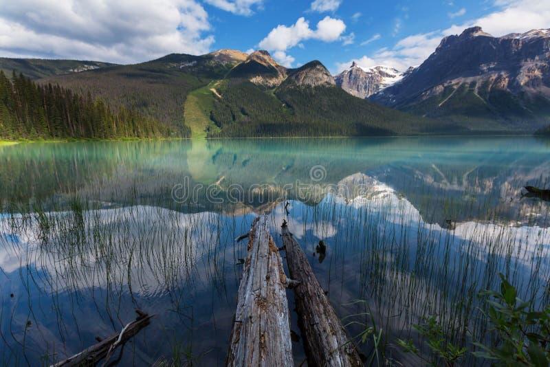 великобританское озеро Канады columbia изумрудное обнаружило местонахождение yoho национального парка стоковые фотографии rf