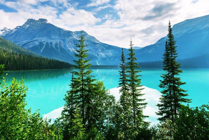 великобританское озеро Канады columbia изумрудное обнаружило местонахождение yoho национального парка стоковая фотография rf