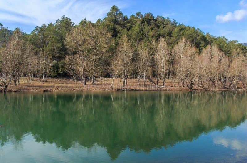 Великолепие большого озера перед мной стоковое фото rf