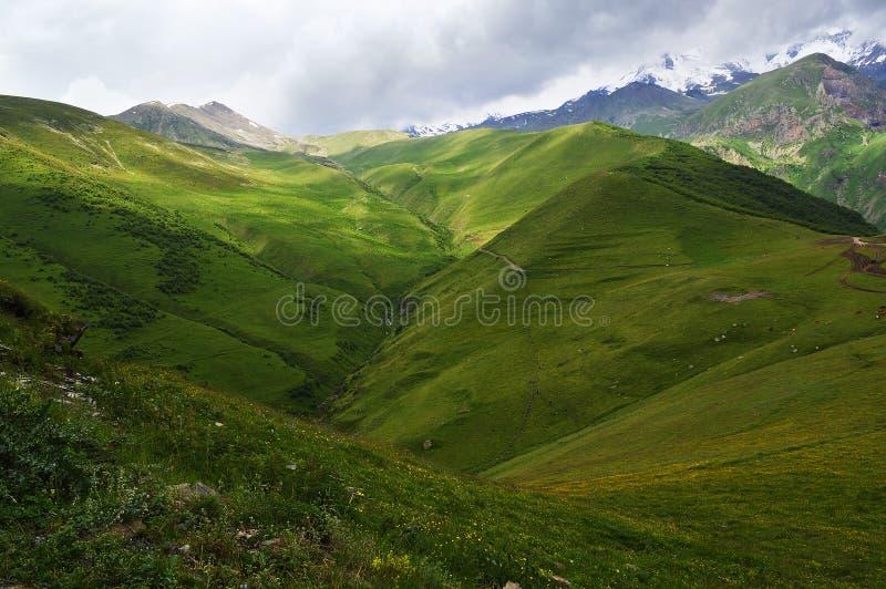 великолепие гор Кавказа стоковые фото