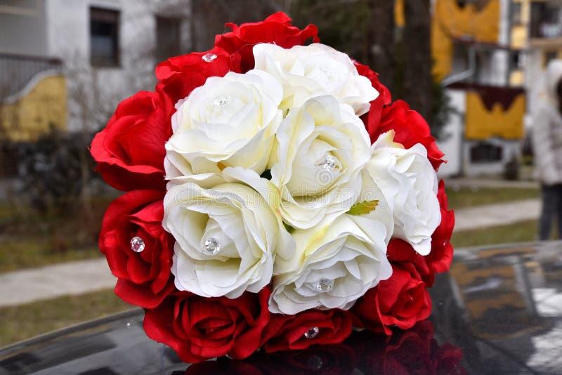 Великолепие красных роз своих красоты и свежести стоковая фотография rf