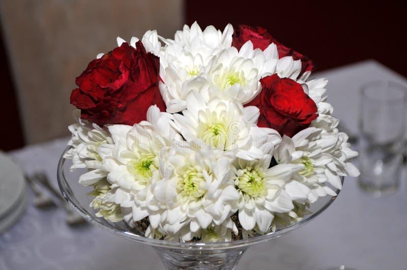 Великолепие красных роз своих красоты и свежести стоковое фото