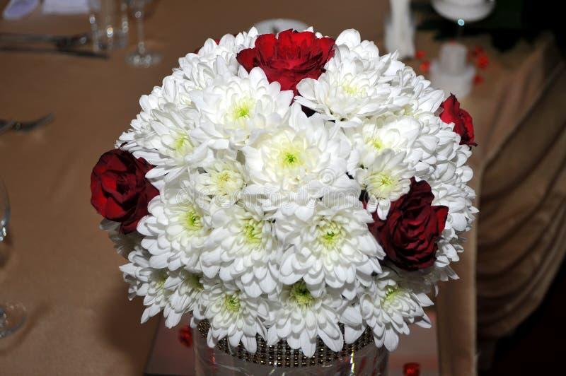 Великолепие красных роз своих красоты и свежести стоковые изображения rf