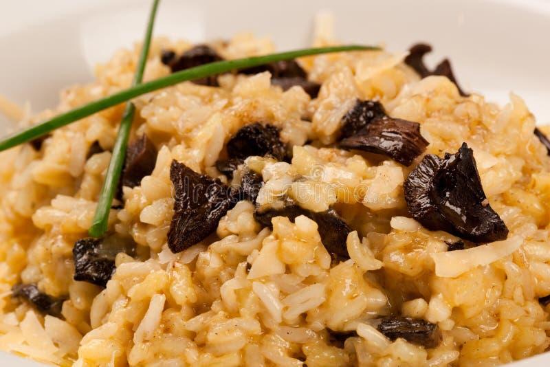 величает shitake риса Это западно-африканский рис jollof d стоковые изображения rf
