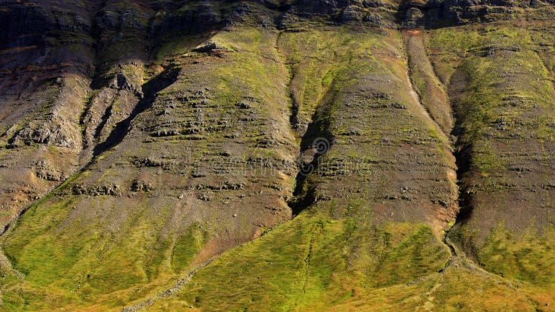 Величественные исландские скалы стоковые изображения