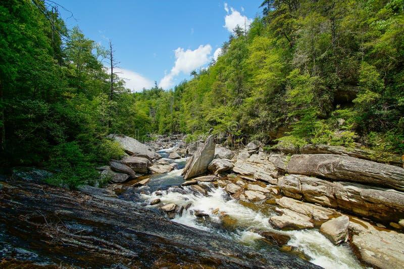 Величественные каскады реки Linville стоковая фотография