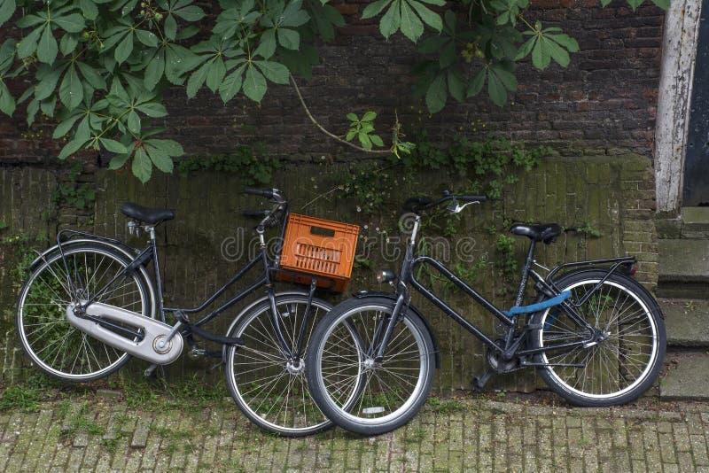 2 велосипеда на зеленой мостоваой с листьями кирпичной стены и каштана стоковое изображение
