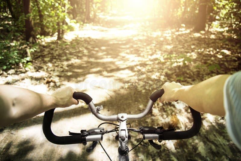 Велосипедист быстро проходя на его велосипеде на заходе солнца в лесе стоковая фотография