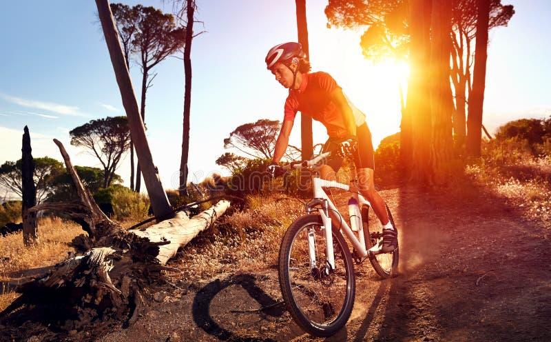 Спортсмен велосипеда горы стоковое фото rf