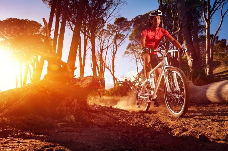 Спортсмен велосипеда горы стоковые фотографии rf