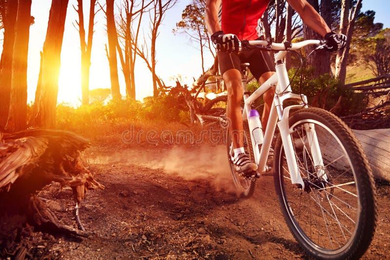 Спортсмен велосипеда горы стоковая фотография rf