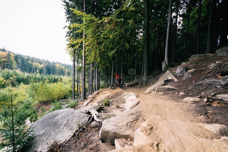Велосипедист горы задействуя на одноколейном пути в лесе осени стоковое изображение rf