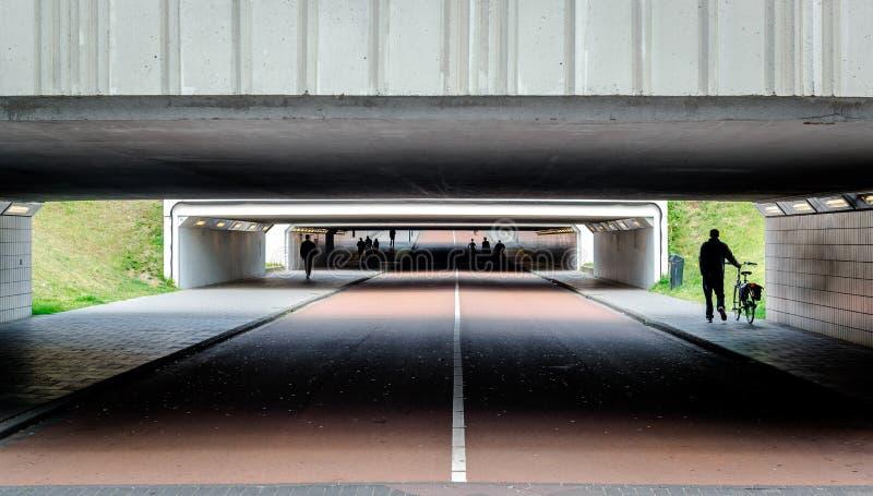 Велосипед и пешеходные переходы стоковое изображение