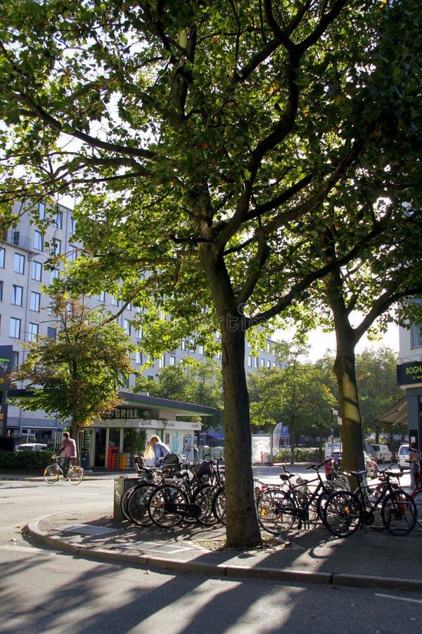 Велосипеды припаркованные в центральном Копенгагене Дании над красивейшими облаками птиц цветы раньше летают море подъемов отраже стоковое изображение rf