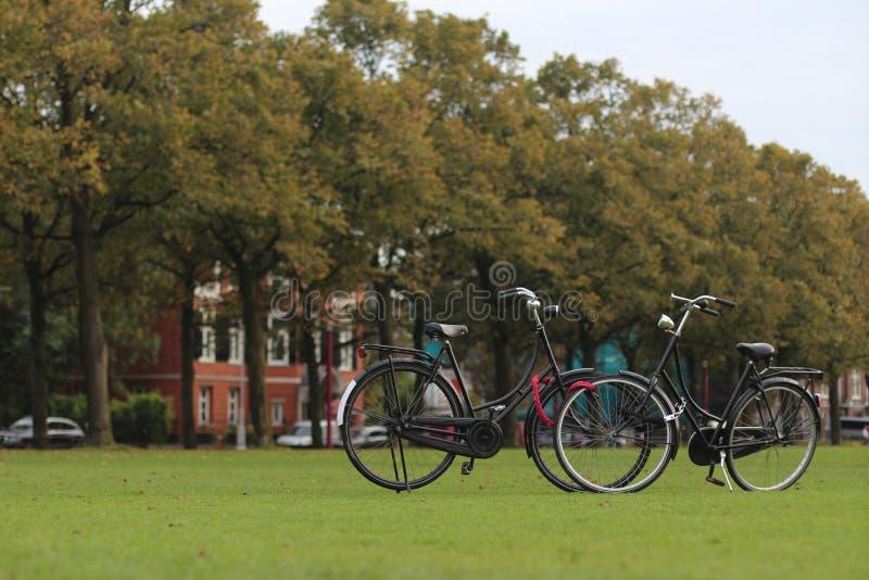 велосипеды amsterdam стоковая фотография
