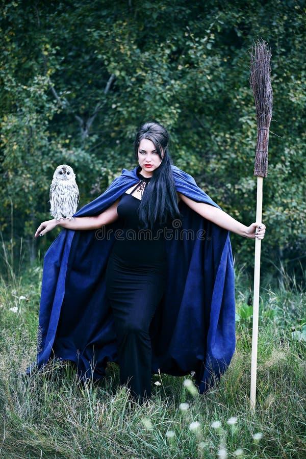 Ведьма с птицей в лесе стоковое изображение rf