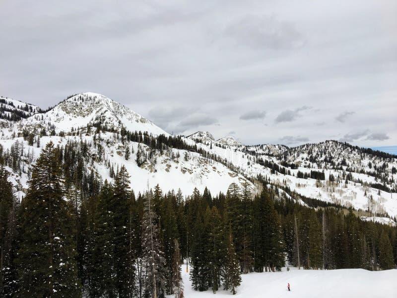 Взгляды зимы величественные вокруг гор Уосата передних скалистых, лыжного курорта Брайтона, близко к озеру сол и долине Heber, Pa стоковые фотографии rf