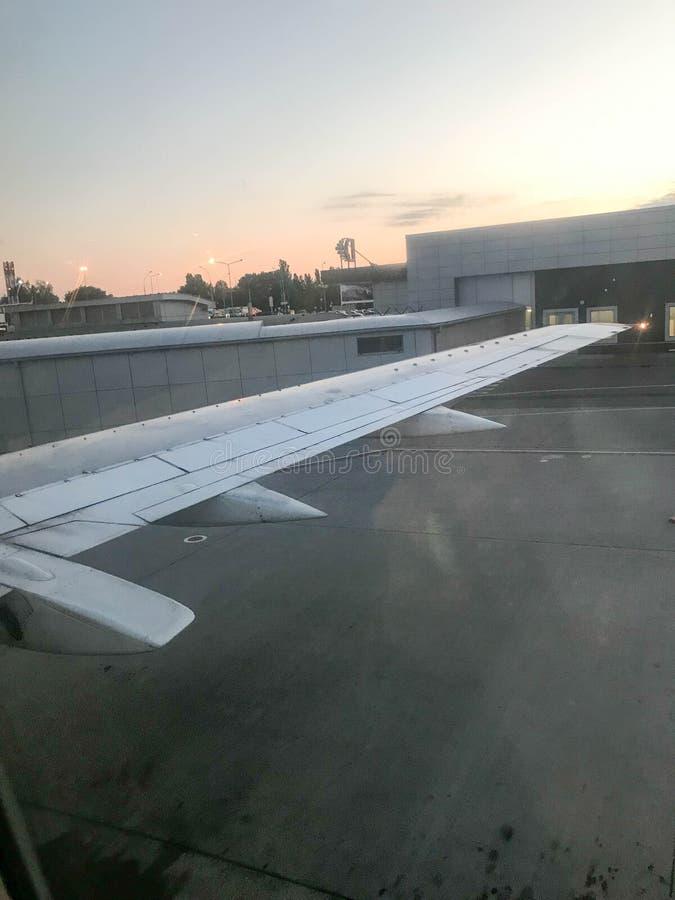 Взгляд авиапорта, ангары от иллюминатора, окна воздушных судн на крыле с двигателями, турбинами после приземляться стоковые фото
