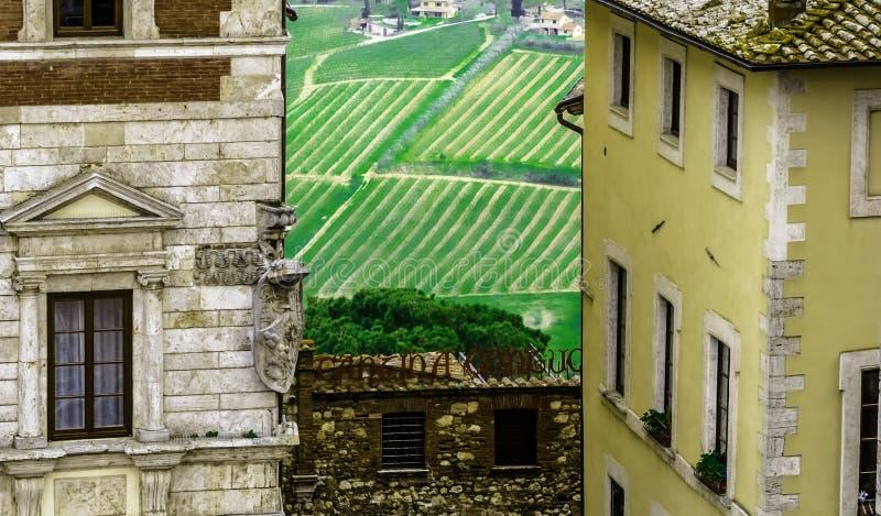 Взгляд Аркады Большой di Montepulciano, со строками виноградин на заднем плане стоковые фотографии rf