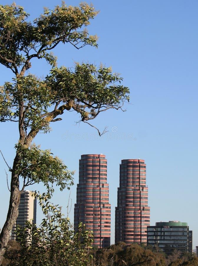 взгляд башен 2 стоковое фото rf
