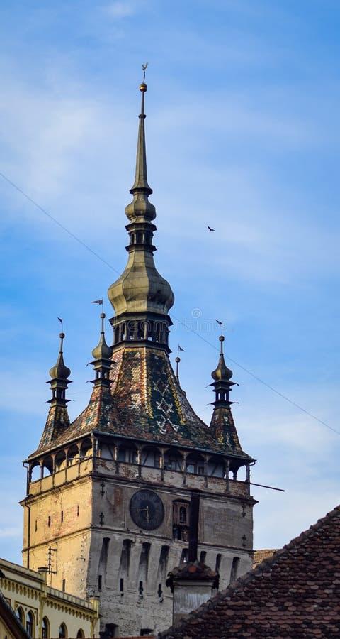 Взгляд башни с часами Sighisoara стоковое фото rf