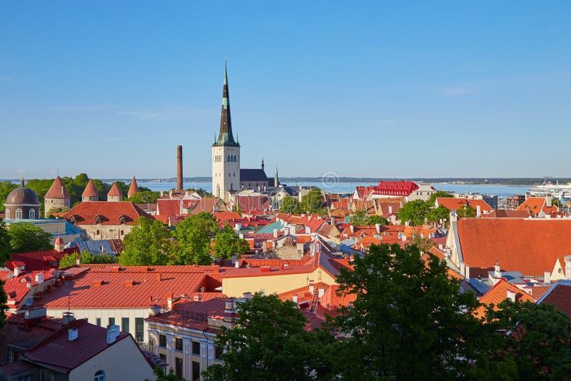 взгляд башни tallinn городища эстонии стоковые фото
