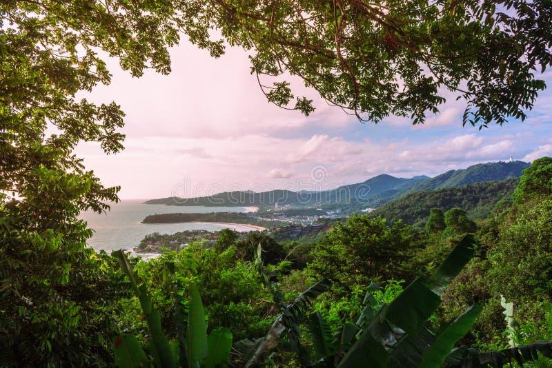 Взгляд береговой линии через толстые, труднопроходимые джунгли стоковое фото rf