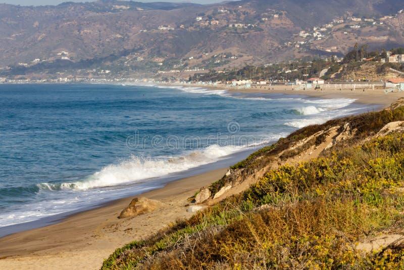 Взгляд бечевника океанских волн и домов горного склона с местными полевыми цветками стоковое изображение