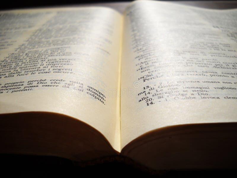 взгляд библии стоковое изображение rf