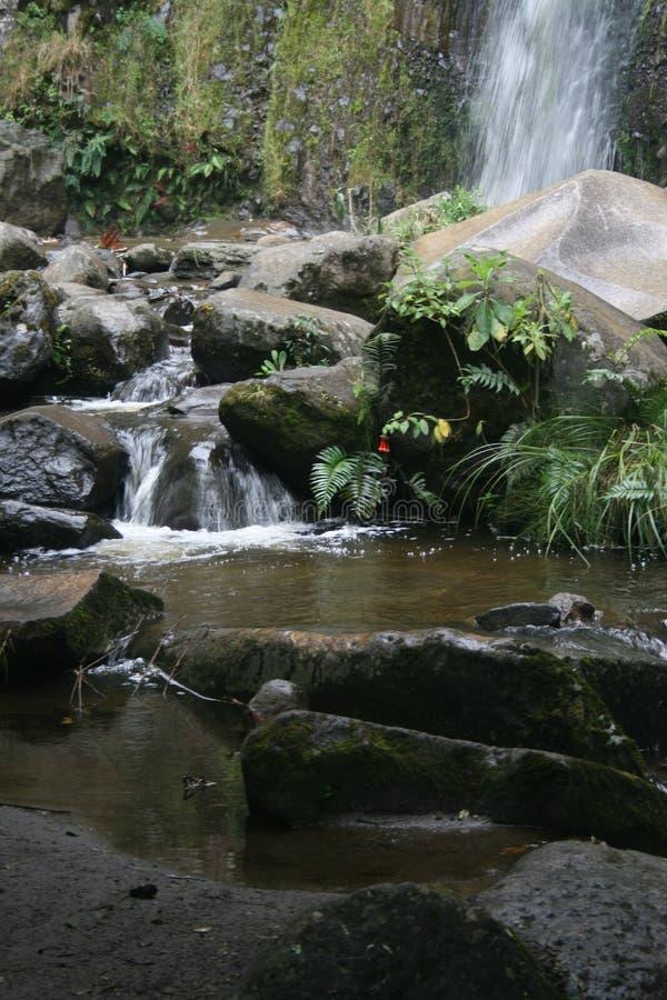 Взгляд вдоль пути водя рядом с потоком пропуская на Cascada Taxopamba Otavalo эквадоре стоковая фотография
