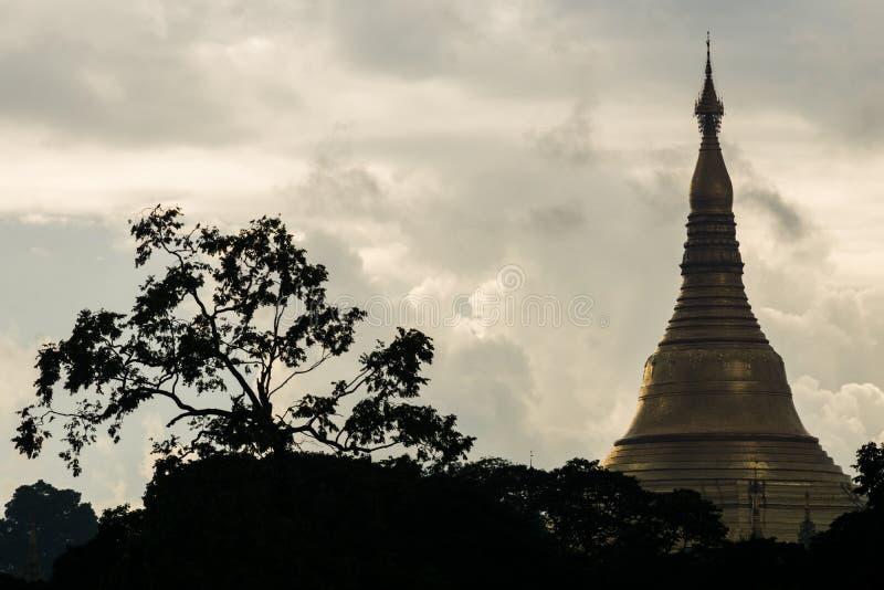 Взгляд верхней части siluhette пагоды Мьянмы shwedagon с облаками и деревом стоковая фотография rf