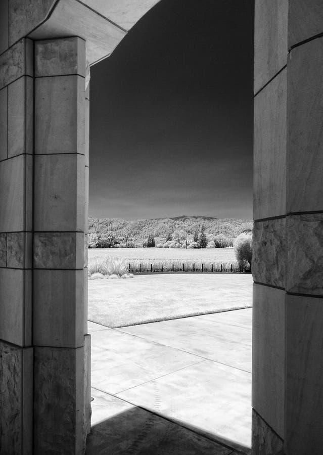 Взгляд виноградника Napa Valley от винодельни, черно-белый стоковое фото rf