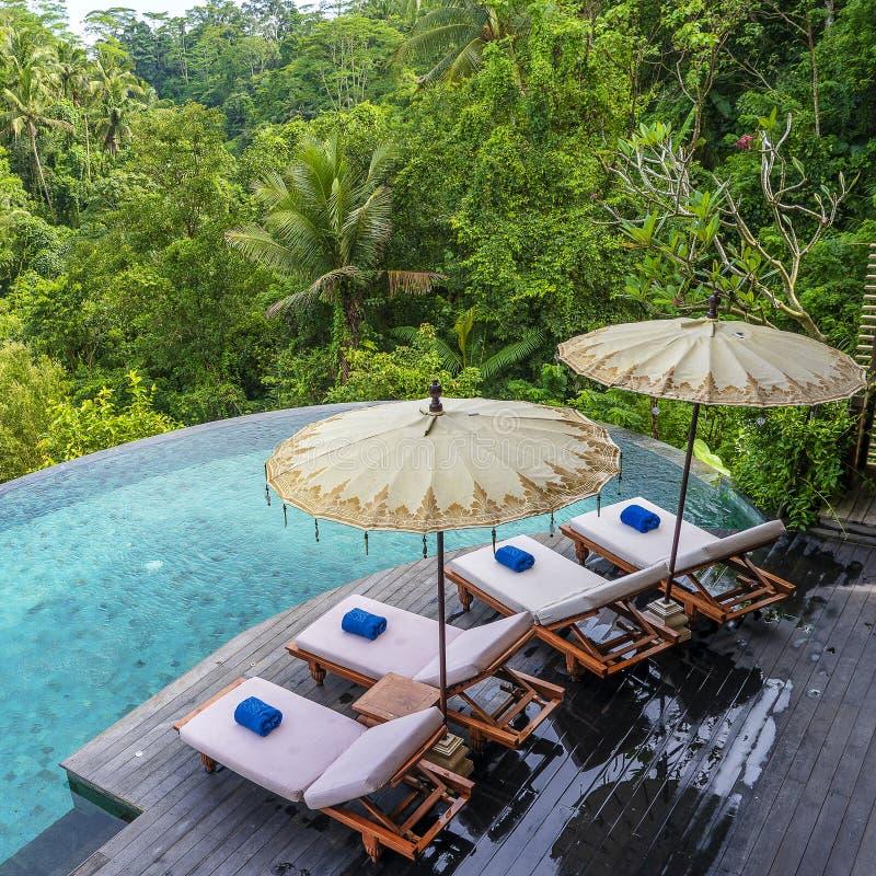 Взгляд воды и sunbeds бассейна в тропических джунглях около Ubud, Бали, Индонезии, взгляда сверху стоковое изображение