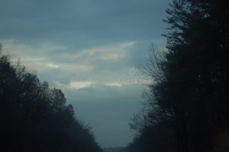 Взгляд голубого неба в вечере окруженного древесинами стоковое фото