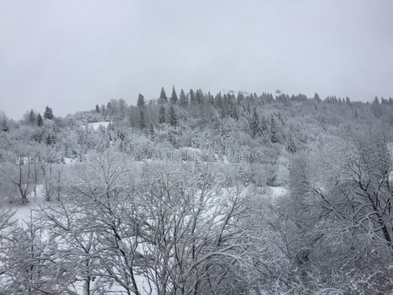 Взгляд горы в зиме стоковое фото