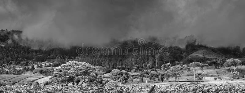 Взгляд 2 горы панорамный стоковые изображения rf