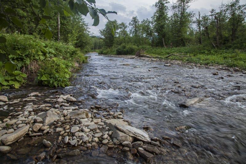 Взгляд гор, Польши, Восточной Европы - поток и некоторого Bieszczady; вода и камни стоковая фотография rf