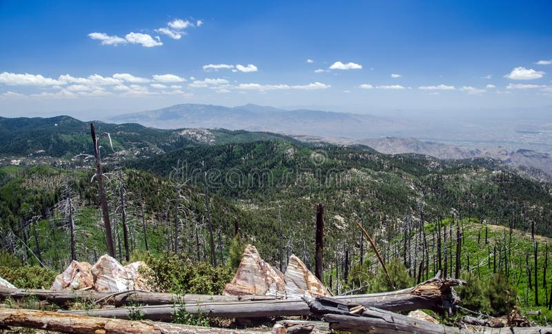 Взгляд гор Санта Каталины от на держателя Lemmon в Tucson, Аризоне стоковые изображения