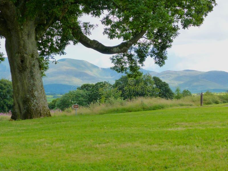 Взгляд гор Mourne в графстве вниз в Северной Ирландии от Castlewellan Forest Park стоковые фотографии rf
