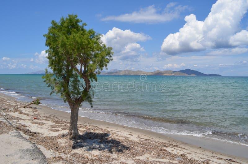 взгляд Греции тропический стоковое фото rf