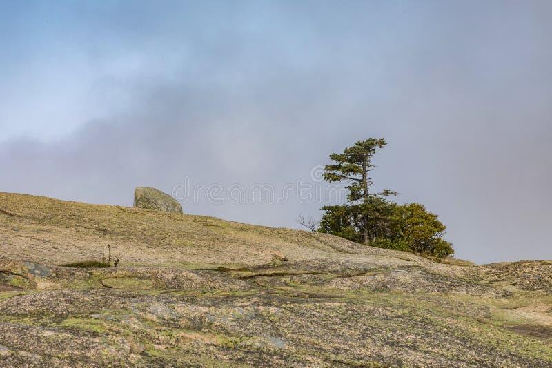Взгляд для того чтобы установить Кадиллак в национальном парке acadia стоковые фотографии rf