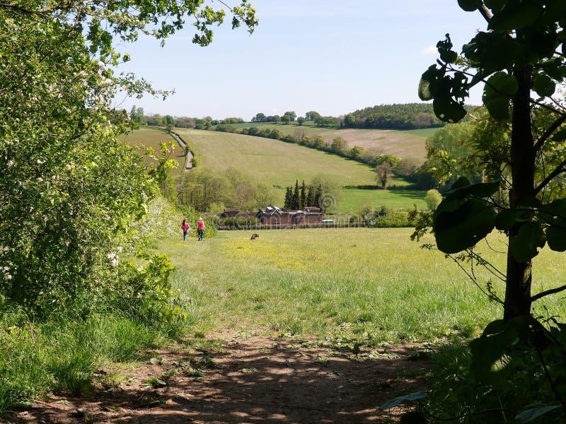 Взгляд долины шахмат в Хартфордшире, Англии, Великобритании стоковое изображение