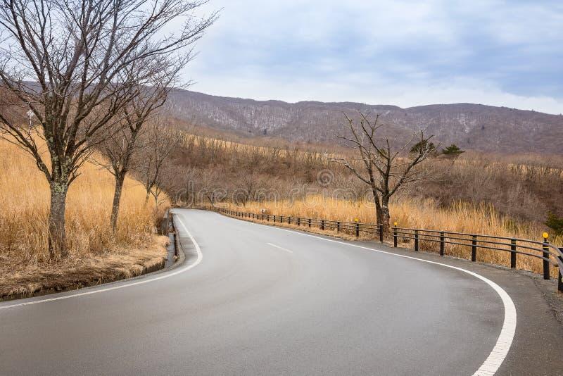 Взгляд дороги в природе стоковое фото rf