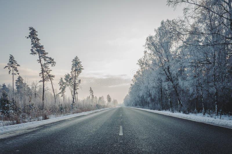 Взгляд дороги шоссе в wintertime Путешествовать предпосылка Прямое шоссе асфальта пропуская через лес стоковое изображение