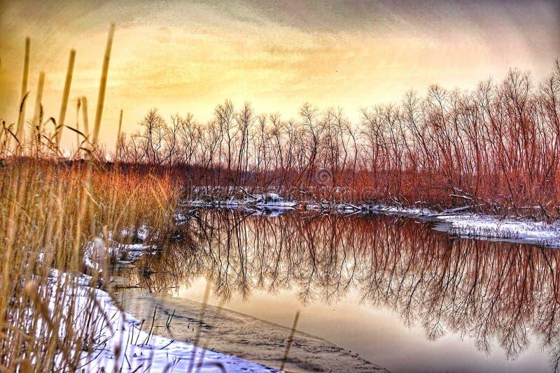 Взгляд заводи на заходе солнца стоковое изображение rf