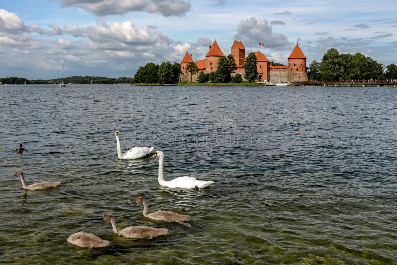Взгляд замка в солнечном дне, озера Galve Trakai, Литвы стоковое изображение rf