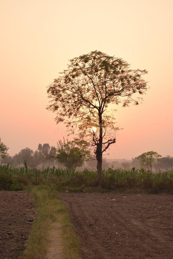 Взгляд захода солнца деревни красивого цвета захода солнца 2 sihal стоковая фотография