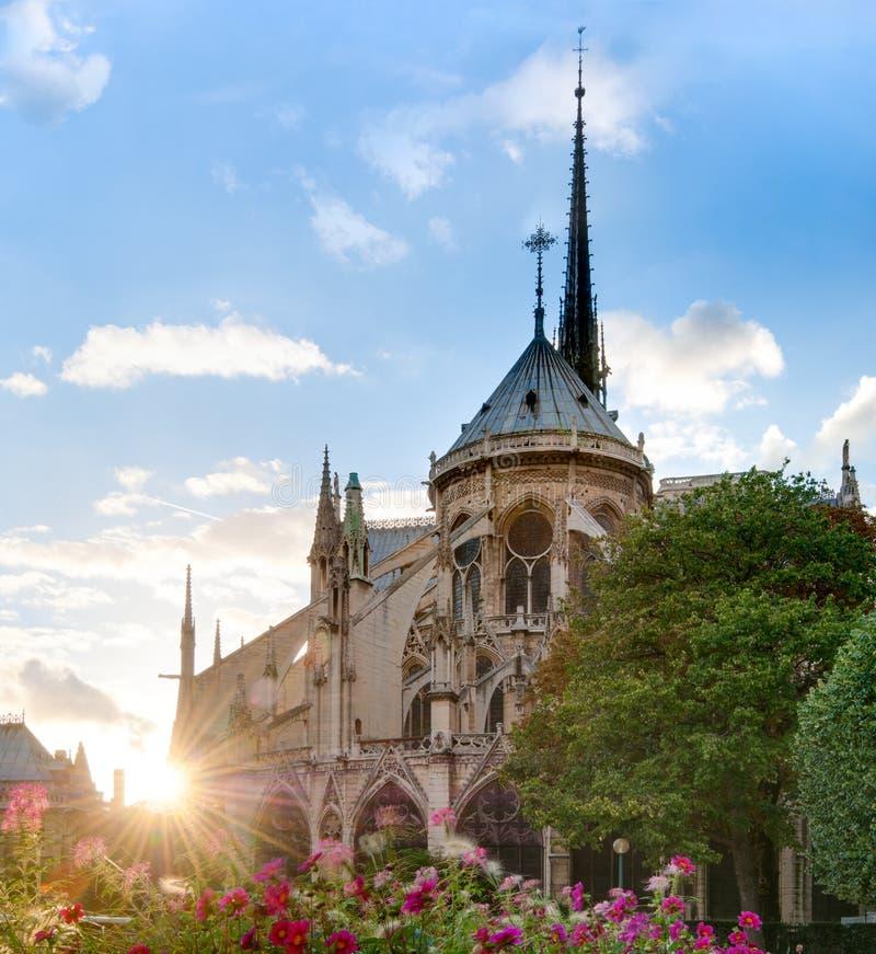 взгляд захода солнца собора dame de notre paris стоковая фотография rf