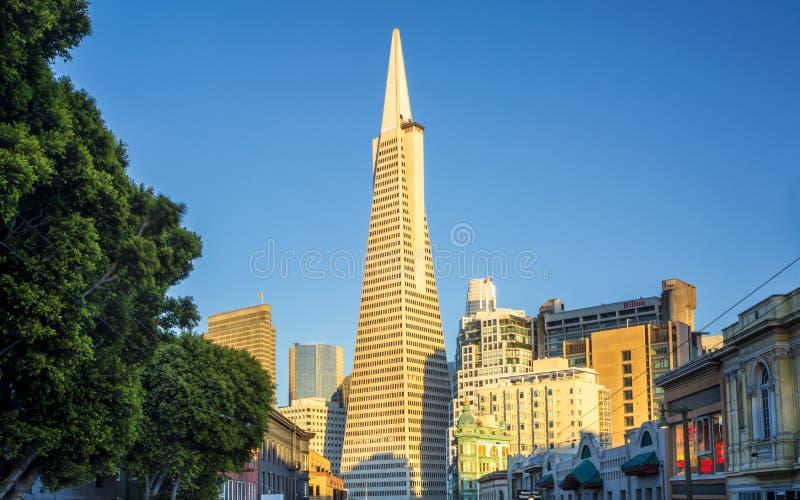 Взгляд здания пирамиды Transamerica на бульваре Колумбус, северном пляже, Сан-Франциско, Калифорния, США, Северной Америке стоковое изображение rf